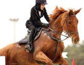مضرات اسب سواری برای خانم ها