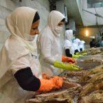 مراحل تولید کنسرو تن ماهی