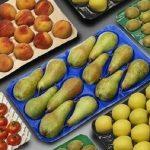 بسته بندی محصولات کشاورزی