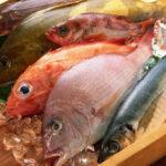 راه های تشخیص ماهی سالم از فاسد