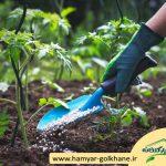 انواع کود شیمیایی برای پرورش گیاهان